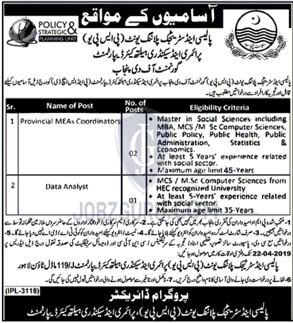 Policy and Strategic Planning Unit Jobs 2019